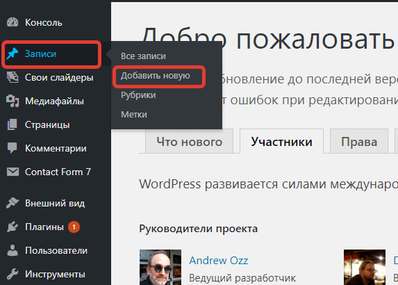 записи на WordPress